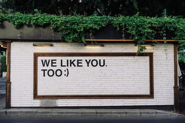 """""""We like you too"""" message on wall with plants"""